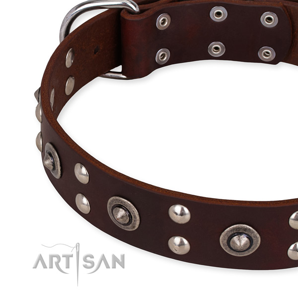 Full grain leather collar with durable traditional buckle for your impressive four-legged friend