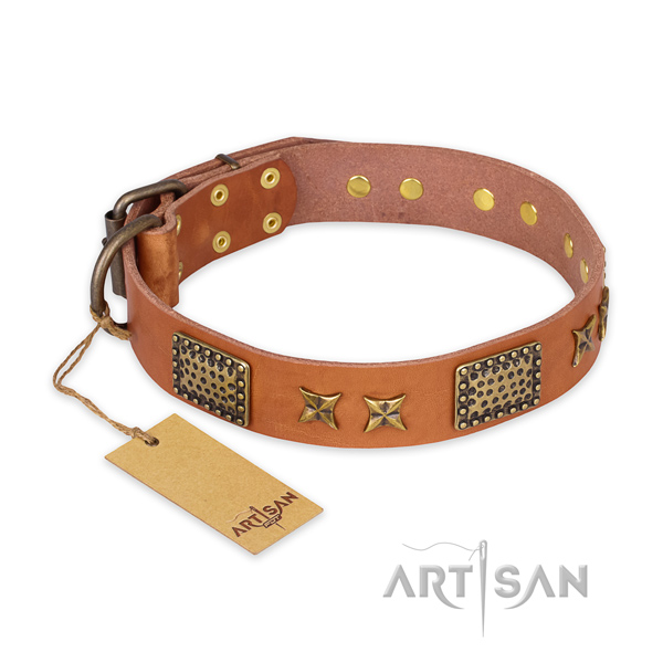 Easy adjustable leather dog collar with reliable buckle