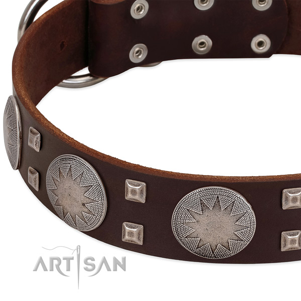 Everyday walking genuine leather dog collar