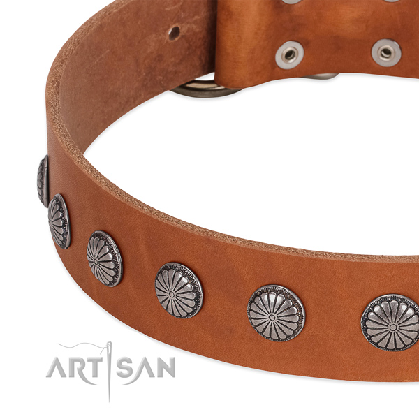 Gentle to touch full grain genuine leather dog collar with studs for stylish walking