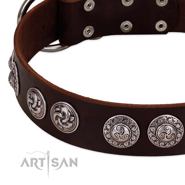 Remarkable full grain natural leather collar for your canine everyday walking