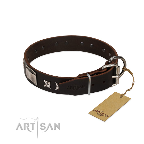 Perfect fit collar of genuine leather for your stylish doggie