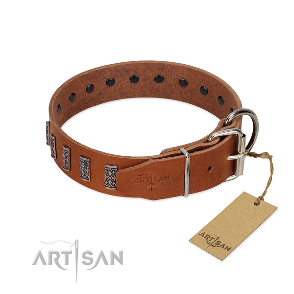 Rust resistant buckle on genuine leather dog collar for stylish walking your canine