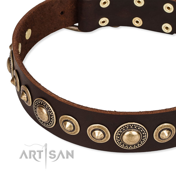 High quality full grain natural leather dog collar crafted for your impressive doggie