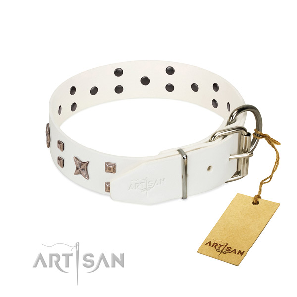 Full grain natural leather dog collar with adornments for your attractive pet