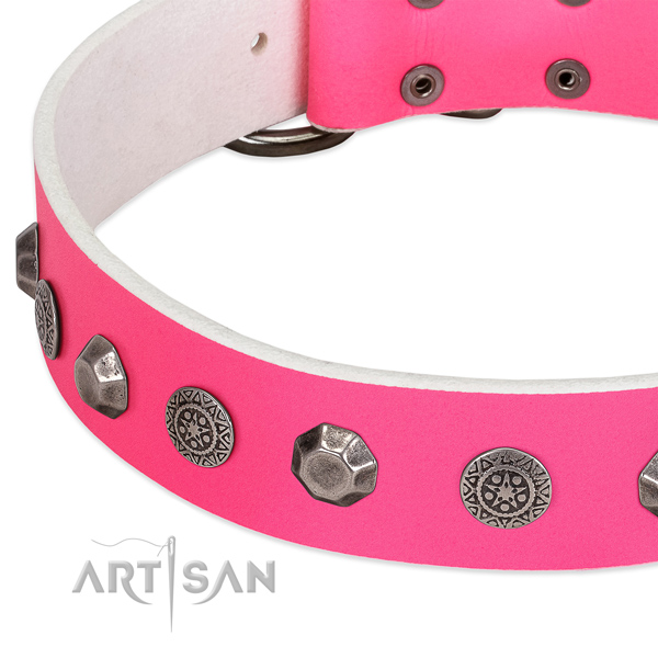Top notch full grain natural leather collar for your four-legged friend stylish walks