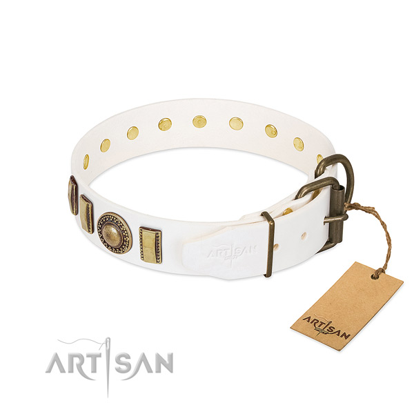 Awesome natural leather dog collar with corrosion resistant hardware