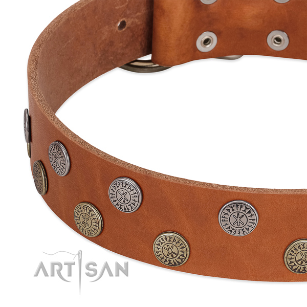 Stunning natural leather collar for easy wearing your canine