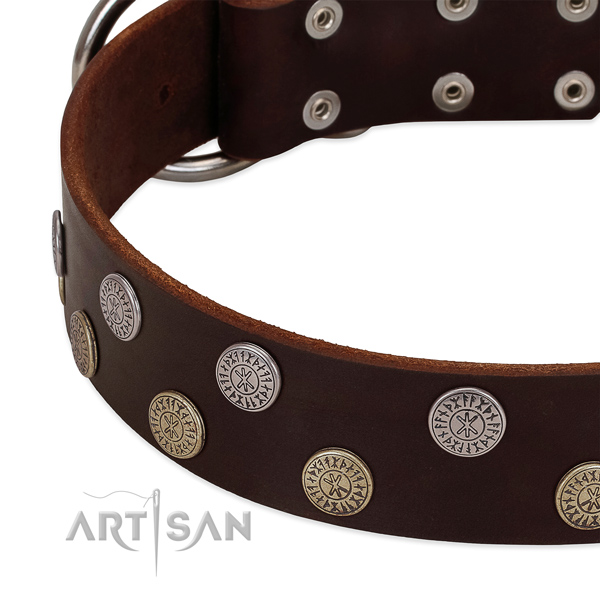 Gentle to touch genuine leather dog collar with adornments for your lovely dog