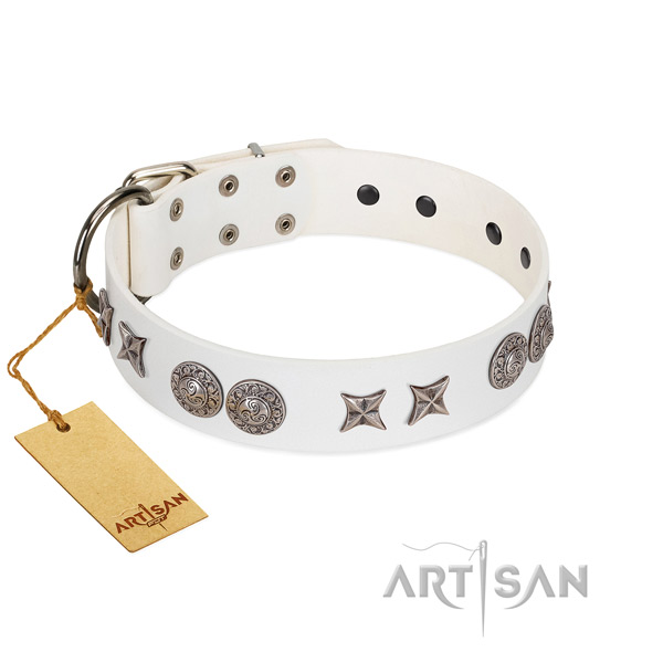 Full grain leather collar with inimitable embellishments for your doggie
