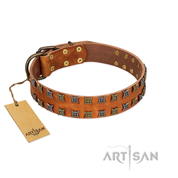 Reliable natural leather dog collar with studs for your canine