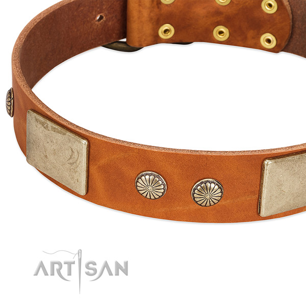 Rust-proof fittings on full grain genuine leather dog collar for your pet