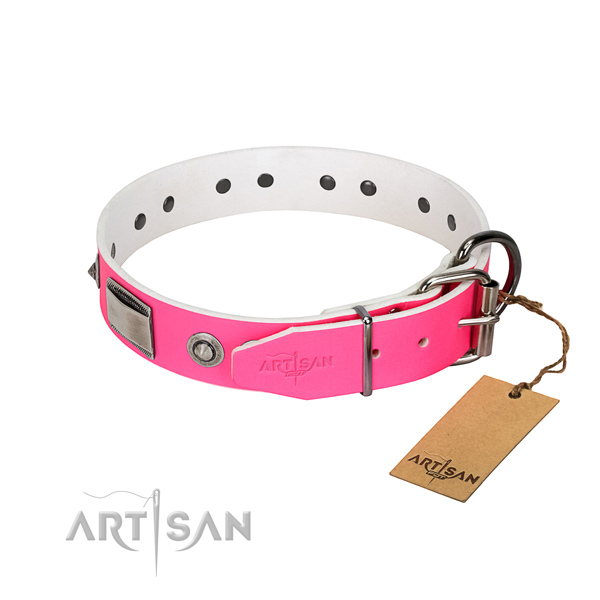 Awesome full grain leather collar with adornments for your canine