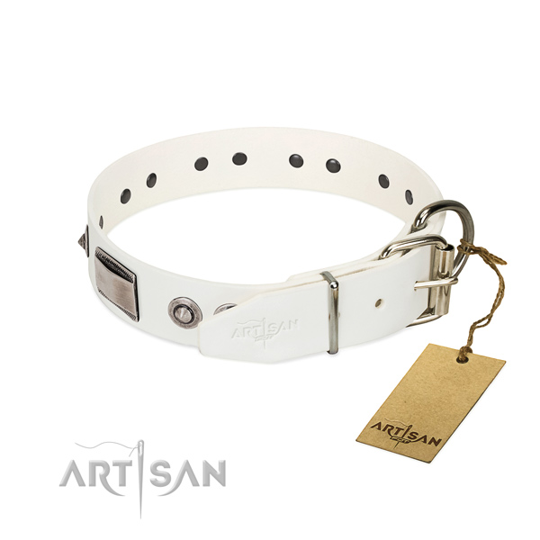 Top quality dog collar of natural leather with adornments