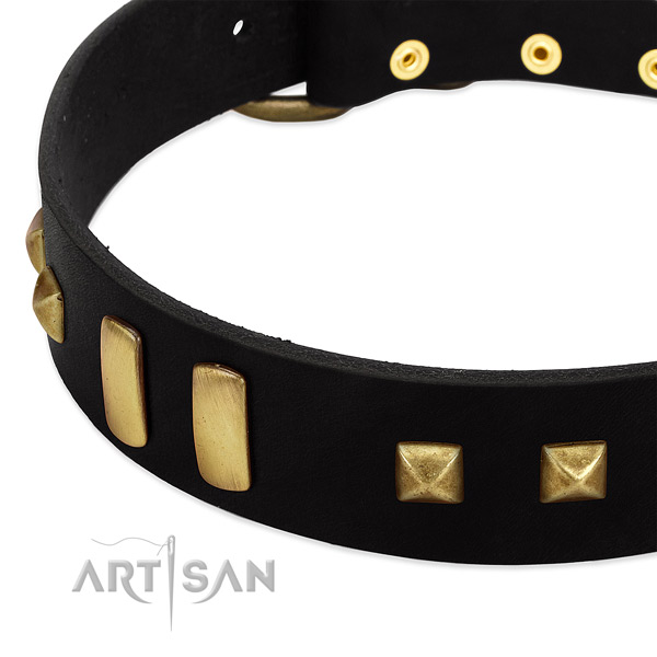 Soft to touch full grain leather dog collar with embellishments for everyday walking