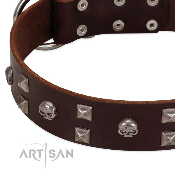 Best quality leather dog collar handcrafted for your doggie