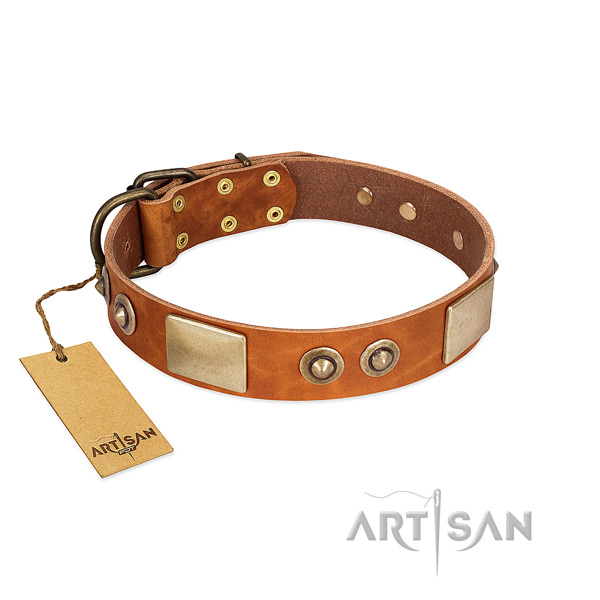 Easy to adjust full grain natural leather dog collar for basic training your doggie