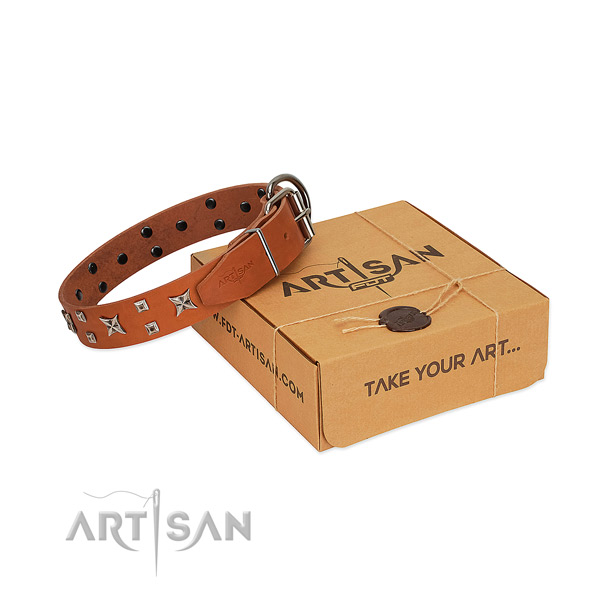 Quality full grain natural leather dog collar with studs for handy use