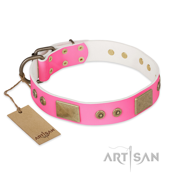 Exceptional full grain genuine leather dog collar for walking