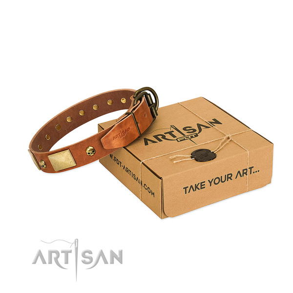 High quality full grain genuine leather collar with rust-proof embellishments for your dog