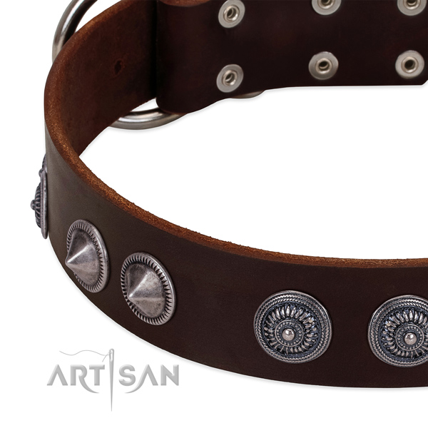 Soft to touch full grain genuine leather dog collar with awesome embellishments
