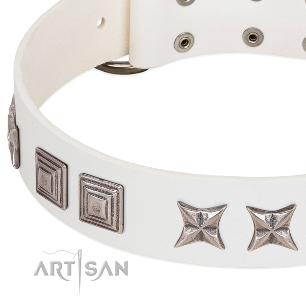 Comfortable wearing full grain natural leather dog collar with stylish design embellishments