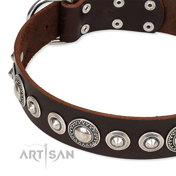 Daily walking adorned dog collar of durable full grain genuine leather