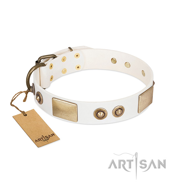 Corrosion resistant hardware on genuine leather dog collar for your four-legged friend