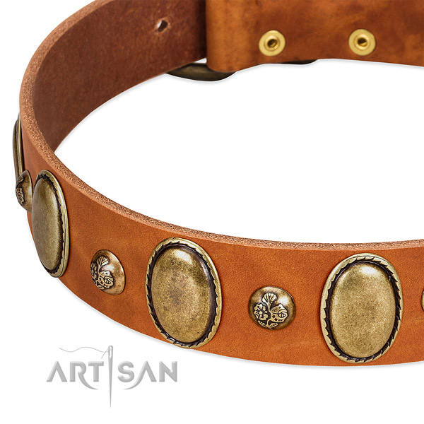 Full grain leather dog collar with inimitable adornments