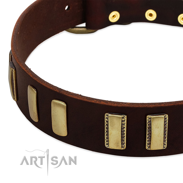 Full grain genuine leather dog collar with corrosion proof fittings for daily walking