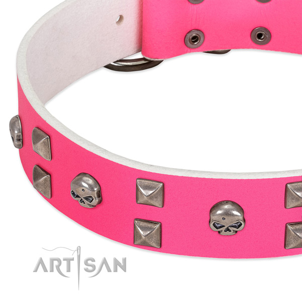 Full grain leather collar with stylish studs for your canine