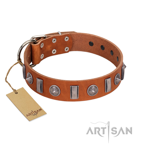 Top notch natural leather dog collar with adornments for handy use