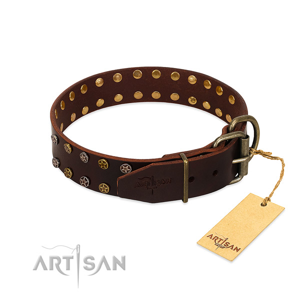Comfy wearing full grain genuine leather dog collar with unusual embellishments