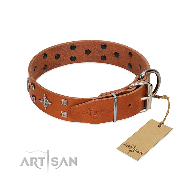 Incredible full grain genuine leather collar for your dog everyday walking