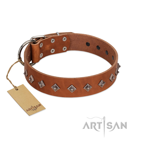 Natural leather dog collar with awesome embellishments handcrafted doggie