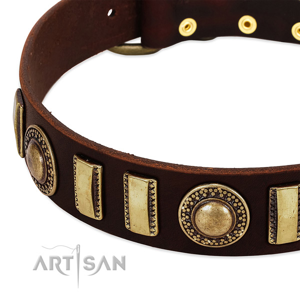 Best quality leather dog collar with rust resistant hardware