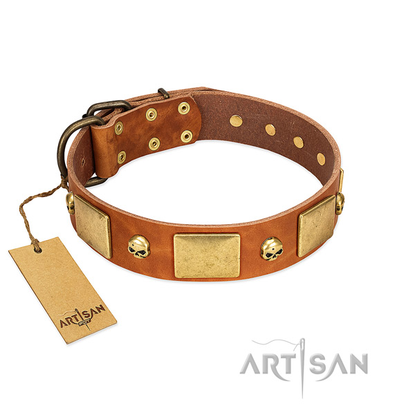 Soft to touch leather dog collar with corrosion proof decorations