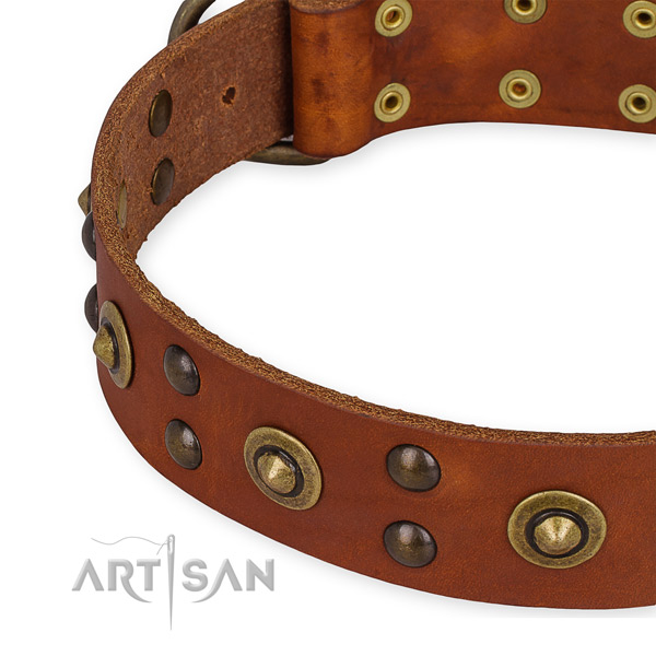 Genuine leather collar with strong buckle for your attractive canine