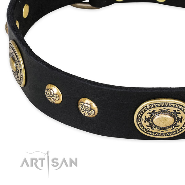 Unusual leather collar for your lovely canine