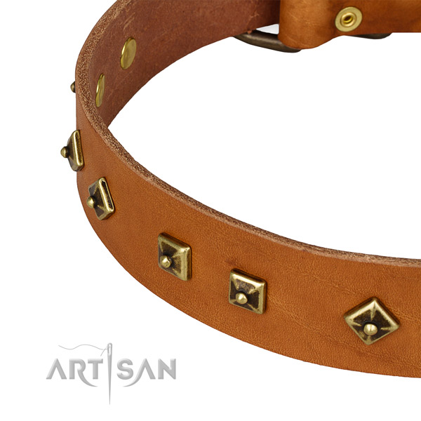 Amazing full grain genuine leather collar for your impressive four-legged friend