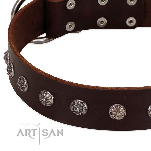 Gentle to touch genuine leather dog collar with adornments for your pet