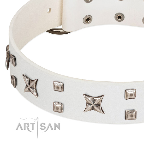 High quality natural leather dog collar with embellishments for fancy walking