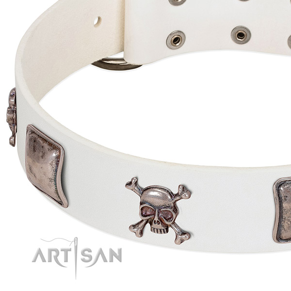 Reliable traditional buckle on natural genuine leather dog collar