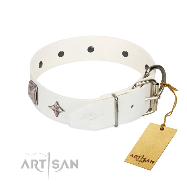 Best quality leather dog collar with exquisite studs