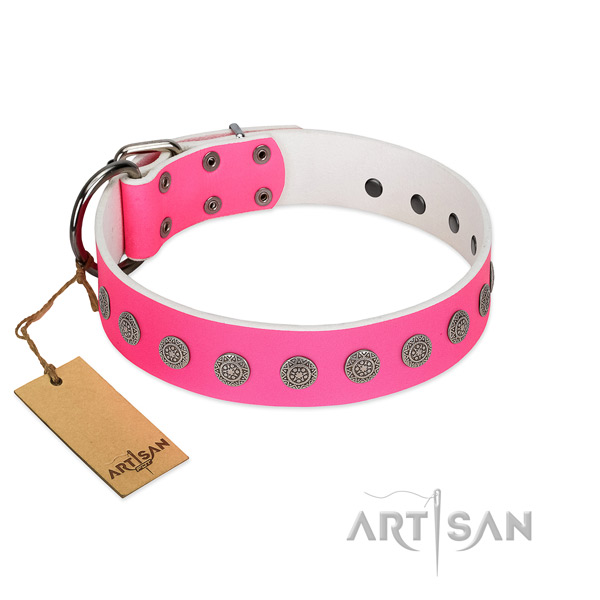 Exquisite studs on full grain leather collar for handy use your doggie