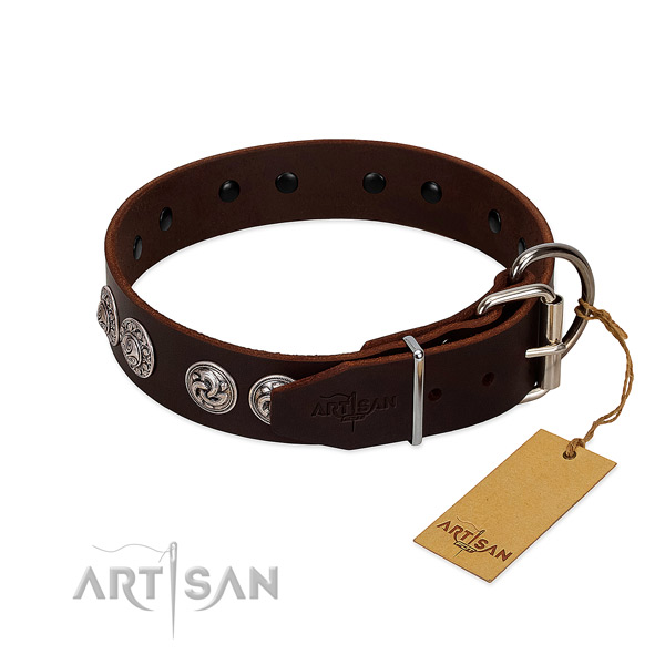 Extraordinary genuine leather collar for your canine everyday walking