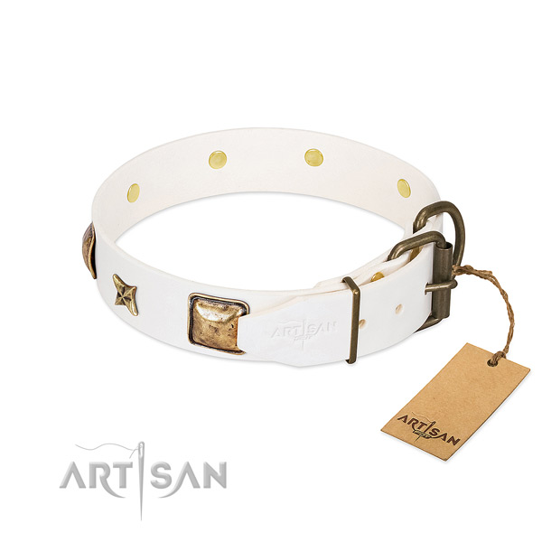 Leather dog collar with rust resistant buckle and studs
