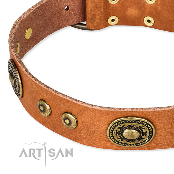 Full grain genuine leather dog collar made of high quality material with adornments