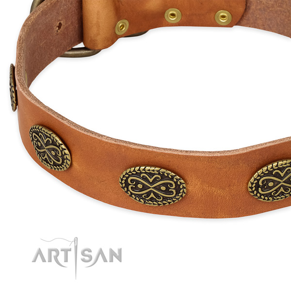 Convenient full grain leather collar for your impressive dog