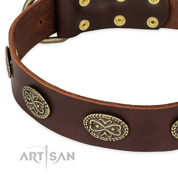 Adorned leather collar for your lovely pet